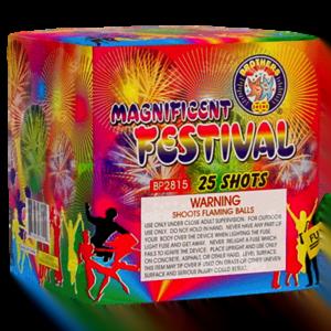 Magnificent Festival